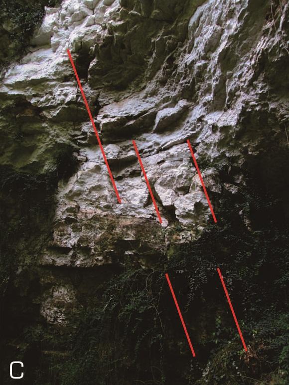 Singkapan struktur geologi (Joint) yang terlihat di dinding bagian utara gua